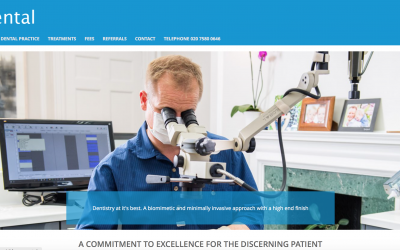 A new website for Dr Robert Stone